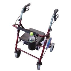 Mobility Aids Rental Program